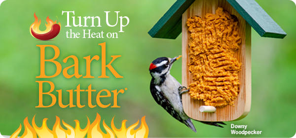 Turn Up the Heat on Bark Butter®